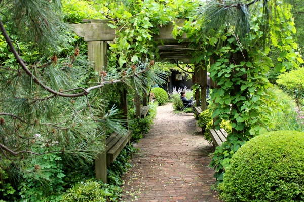 6BC Botanical Garden – a NYC East Village haven | My Secret